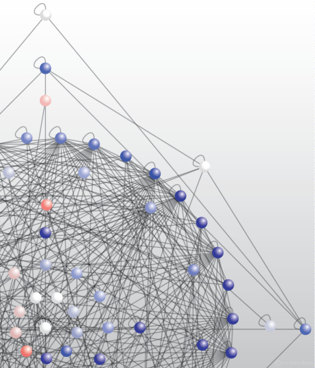 Adhesion complex interaction network // Image by Adam Byron