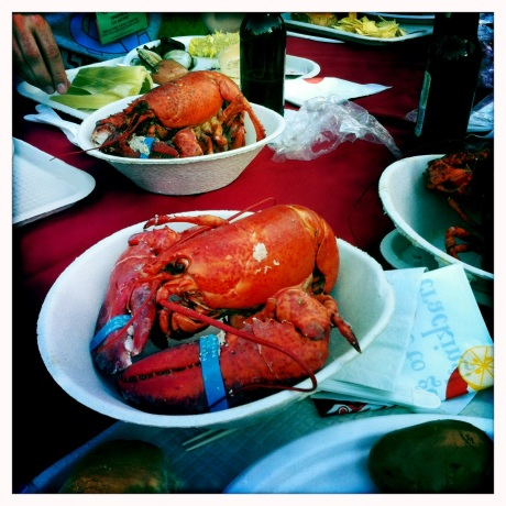 Maine Lobster // Image by Adam Byron