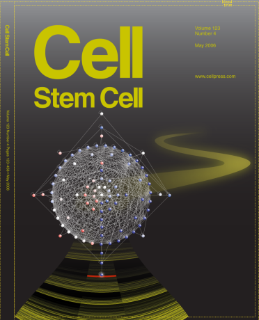 Cell Stem Cell cover bid // Image by Adam Byron